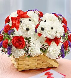 Twin Puppy Love  in Sunrise, FL | FLORIST24HRS.COM
