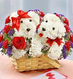 Twin Puppy Love