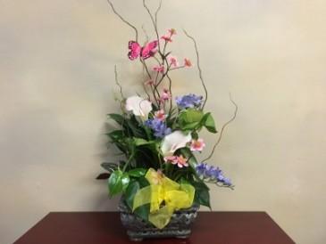 Medium Decorated Ceramic Dish Garden Dish Garden