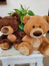 Medium sized plush bear