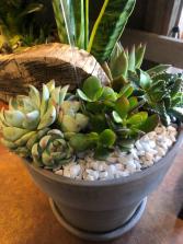 Medium Succulent Planter