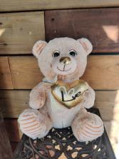 Medium Valentines Bear