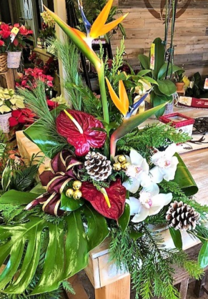Mele Kalikimaka Tropical Arrangement in Venice, FL | ALWAYS AN OCCASION FLORIST & DECOR