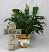Memorial Cross and Plant Funeral