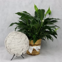 Memorial Plaque and Plant Funeral