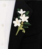 White Stephanotis Boutonniere