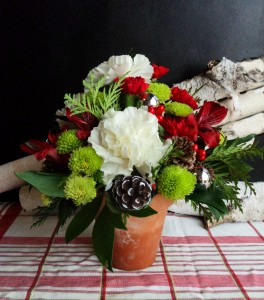 Merry and Bright Arrangement in North Adams, MA | MOUNT WILLIAMS GREENHOUSES INC