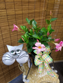 Metal Cat Outdoor planter Limited quantities