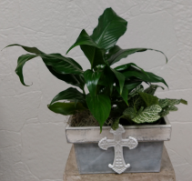 Metal Cross Planter with Plants