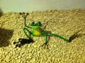 Metal Garden Art Frog