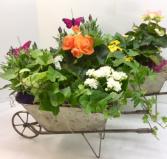 Metal Garden Wheelbarrow
