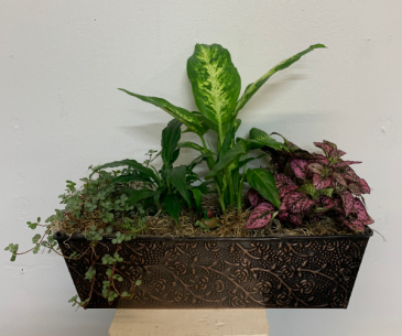 Metal planter with tiny turtle and snail planter