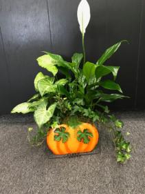 Metal Pumpkin Garden