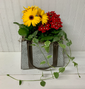 Metal Purse of Annuals