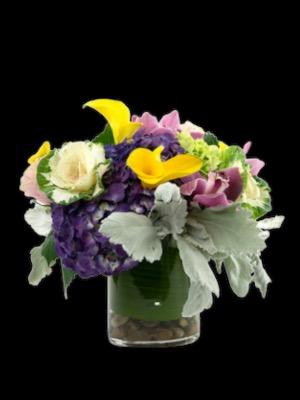 Mi Pequena Round BQT in Falls Church, VA   Geno's Flowers