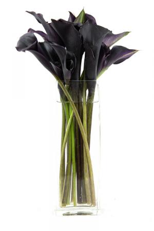 Midnight Calla Rectangle vase