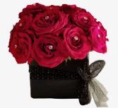 Midnight Kiss 24 short stem roses