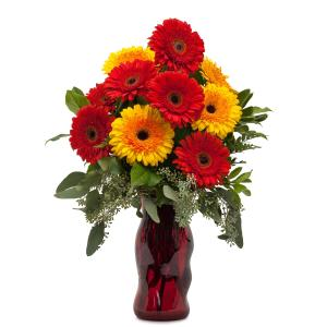 Mighty Gerberas Arrangement in Roswell, NM | BARRINGER'S BLOSSOM SHOP