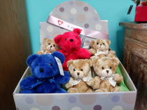 Mini Bears Stuffed Animals