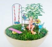 Mini or Fairy Garden Container garden