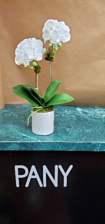 Mini Orchid Arrangement  in New York, NY | PANY SILK FLOWERS