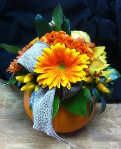 MINI PUMPKIN CENTERPIECE in Calgary, AB | Dutch Touch Florist
