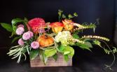 Mini Pumpkin Patch Fresh Floral Design