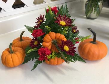 Mini pumpkins Fall