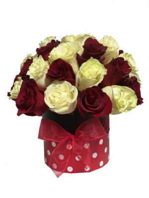 Minnie Mouse Red & White Roses Box of Roses in Miami, FL | FLOWERTOPIA