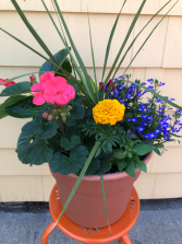 Mixed Annual Planter Outside Planter