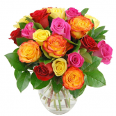 Mix Roses  Roses