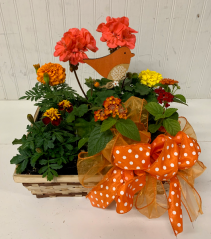 Mixed Annuals in a Square Basket