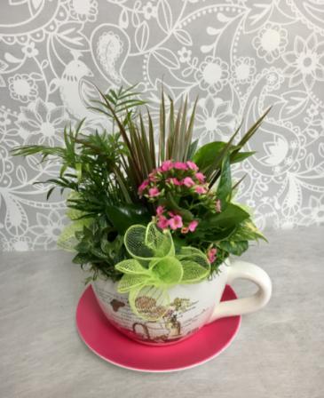 Mixed Blooming garden in cup  Dish Garden