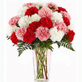mixed carnations in a vase