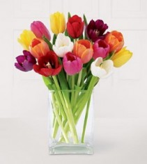 Mixed Colored Tulips in a rectangular vase!!