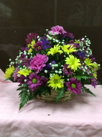 Mixed Daisy Carnation Basket Arrangement