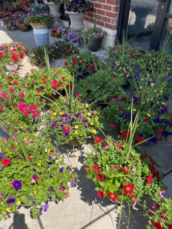 Mixed English Garden Mixed Planters Outdoor Patio Pots