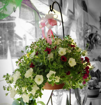 Mixed Flower  Hanging Basket **Colors May Vary**