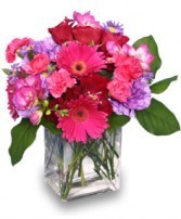 Mixed flowers in a compact arrangement