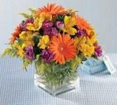 GW 7-mixed flowers in a compact arrangement (Flowers and colors may vary)