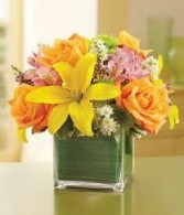 JB 1-Mixed flowers in a compact arrangement (flowers and colors may vary)