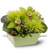 NB 2-Mixed flowers in a compact arrangement (Flowers and colors may vary)