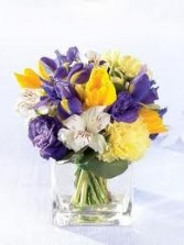 NB 5-Mixed flowers in a compact vase arrangement (Flowers and colors may vary)