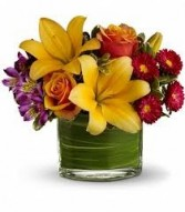 SE 4-Mixed flowers in a compact vase arrangement Flowers and colors may vary