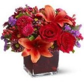 Th 6-Mixed flowers in a compact vase arrangement Flowers and colors may vary