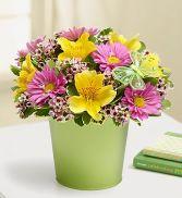 Mixed Garden Bouquet Bouquet