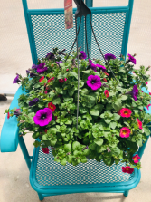Mixed hanging basket 12 inch