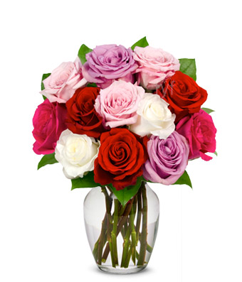 Mixed Pink red,lavender,white,roses in vase