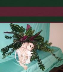 Mixed Planter - Designers Plant