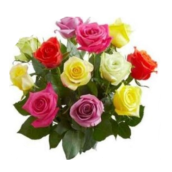 Mixed Rose Bunches No Frills Offer